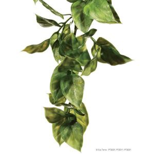 ExoTerra Plastic Plant Ampallo - Small, Medium or Large