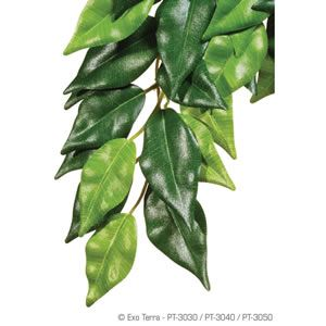 ExoTerra Silk Plant Ficus - Small, Medium or Large